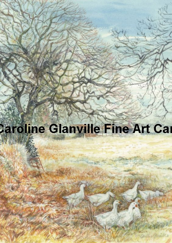 Geese in the winter frost, painting by Caroline Glanville