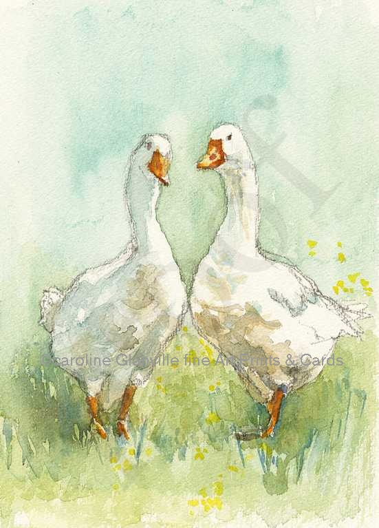 Pair of geese, painting by Caroline Glanville