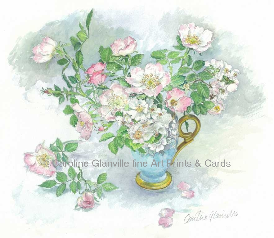 wild roses in a jug, painting by Caroline Glanville