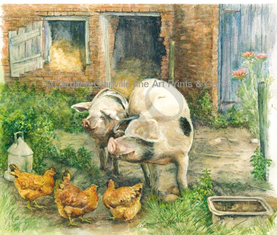 Gloucester old spot pigs, painting by Caroline Glanville