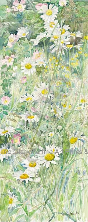 Large daisies in meadow, painting by Caroline Glanville