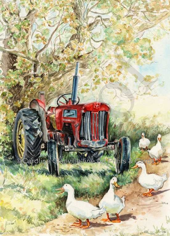 red tractor and geese, painting by Caroline Glanville