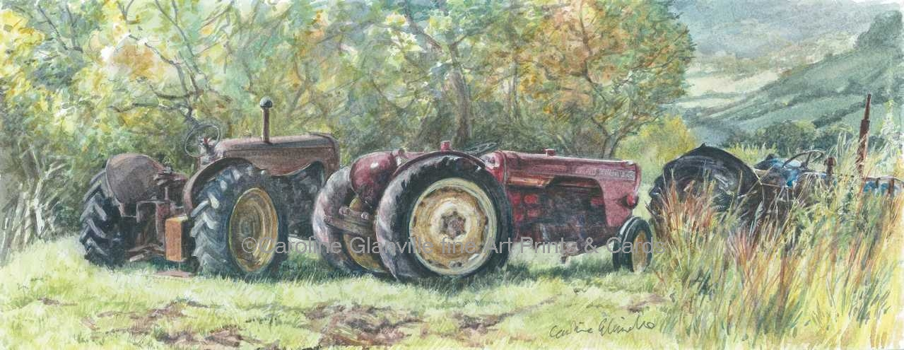 Abandoned tractors, painting by Caroline Glanville