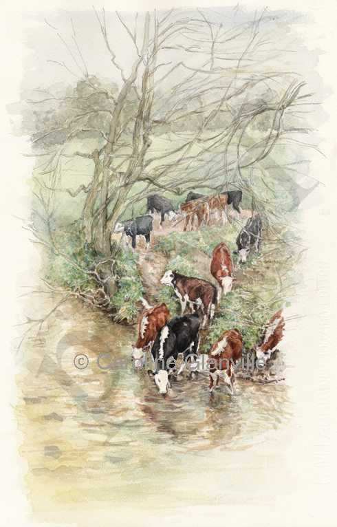 Cattle river winter scene, painting by Caroline Glanville